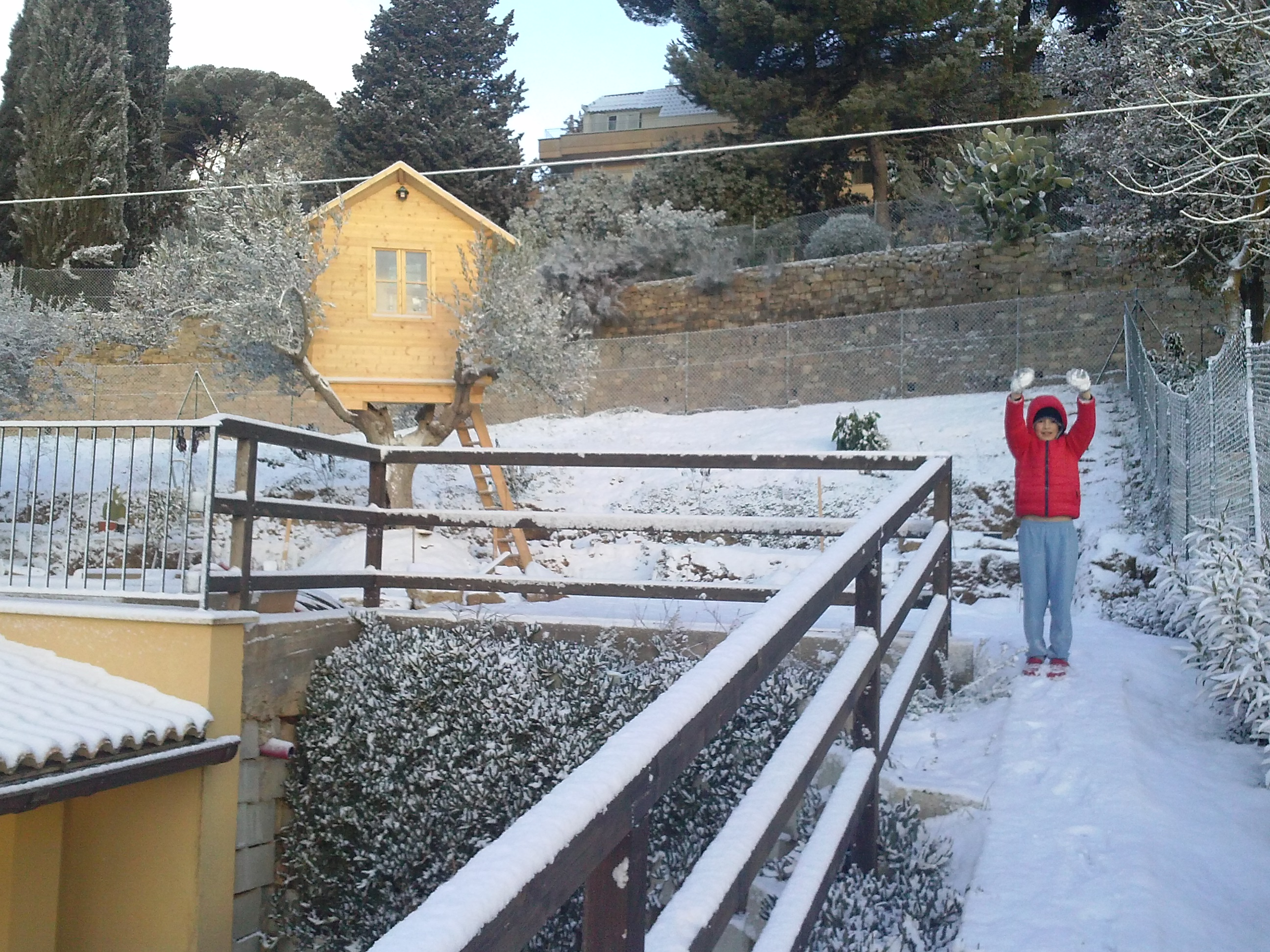 casa sull'albero a caltanissetta sicilia ESCAPE='HTML'