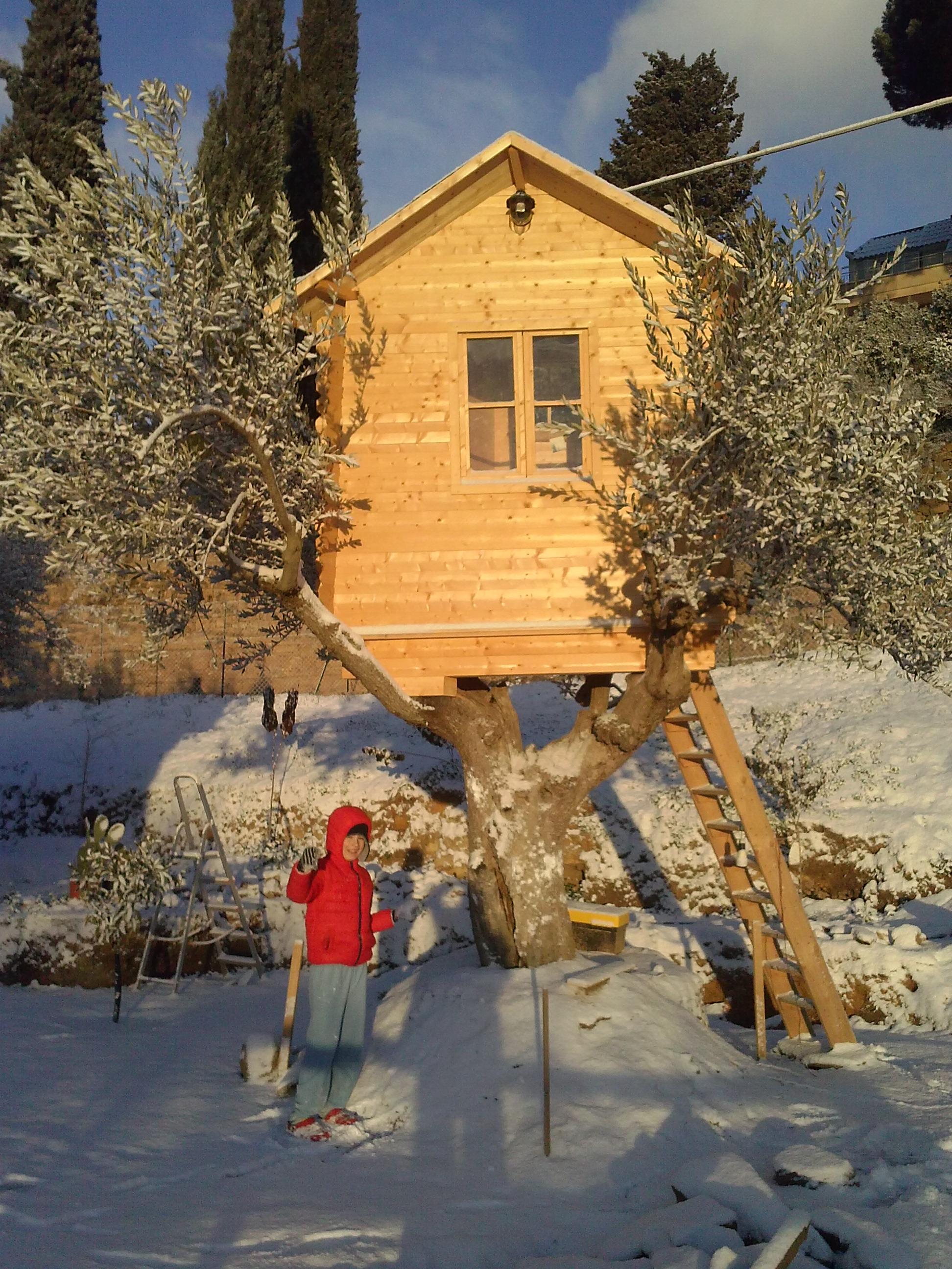 foto casa sull'albero in sicilia  ESCAPE='HTML'